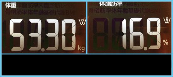 53.3kg×16.9%=体脂肪率9.0kg