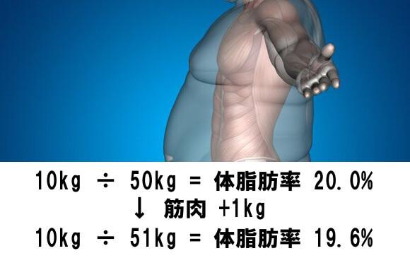 筋肉+1kgで体脂肪率△0.4%