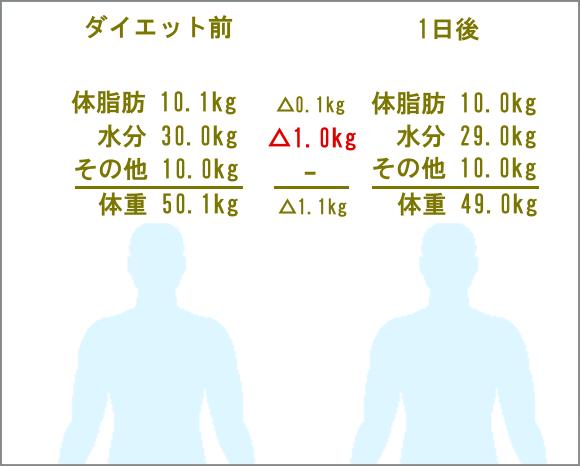 体水分による体重の変化