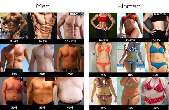 シックスパックを作る体脂肪率