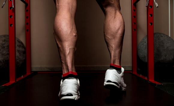 筋肉でふくらはぎが太くなる