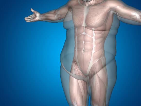 肉体改造の方法
