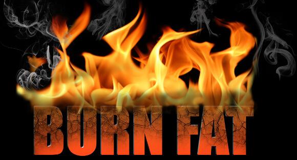 体脂肪の燃焼