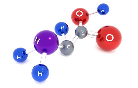 チアシードのアミノ酸
