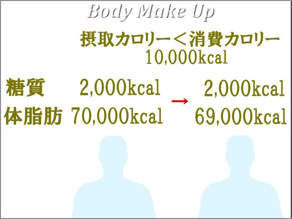 カロリーバランスと体脂肪