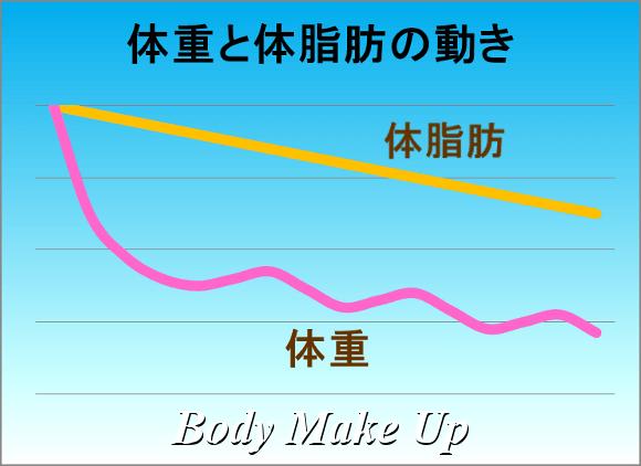 体重と体脂肪の動き