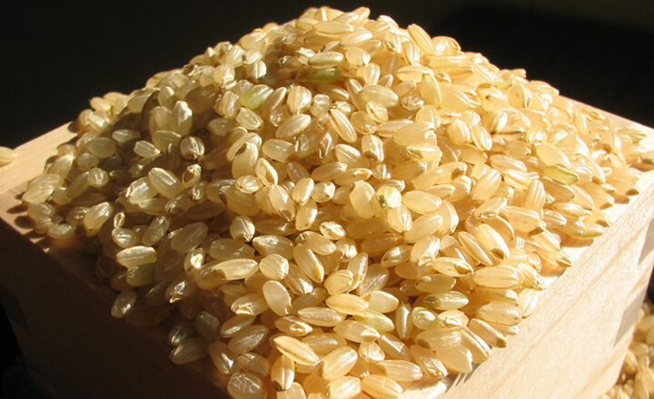 玄米のダイエット効果まとめ