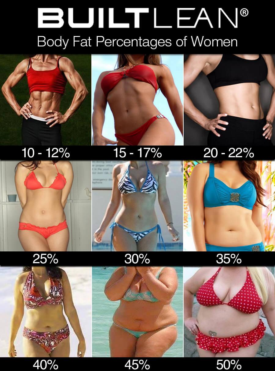 率 平均 女子 体 脂肪