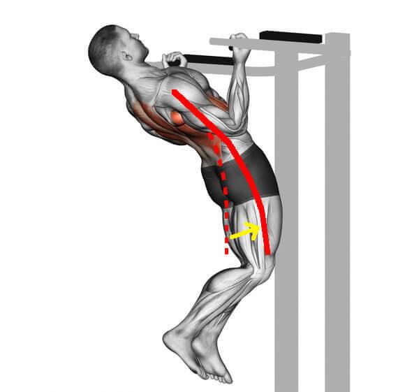 懸垂での腹筋の働き