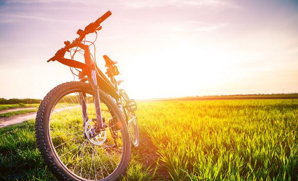自転車のダイエット効果