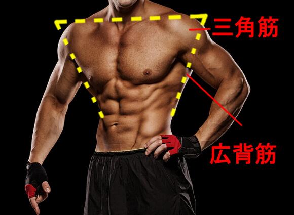 逆三角形の体