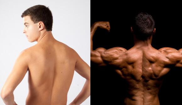 筋肉のある肩・ない肩 バック