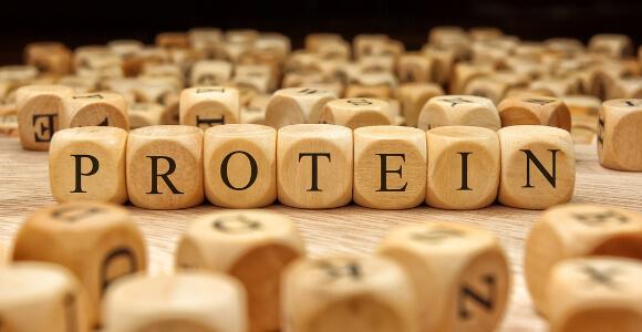 ケトン体ダイエットとタンパク質