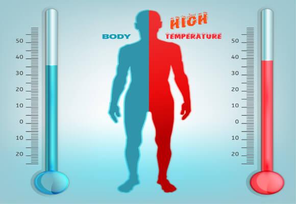 体温と代謝