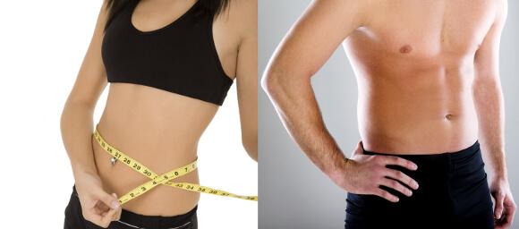 美容・理想体重の体型