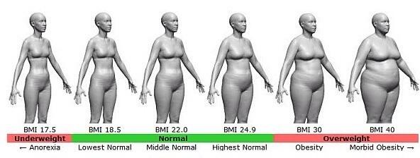 BMIと女性のスタイル