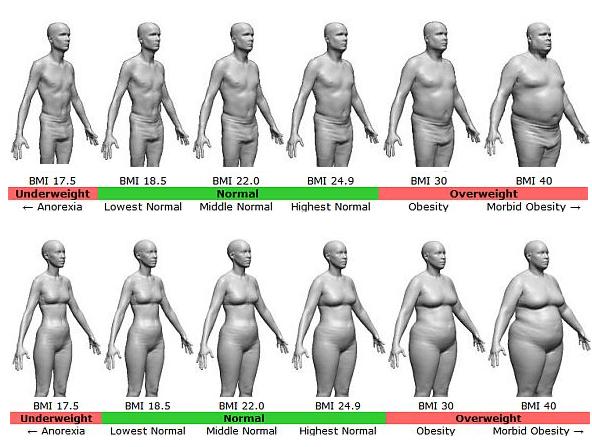 BMIごとの体格