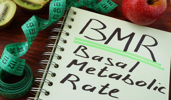 消費カロリーと基礎代謝