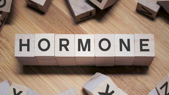 ホルモンの変化と体脂肪