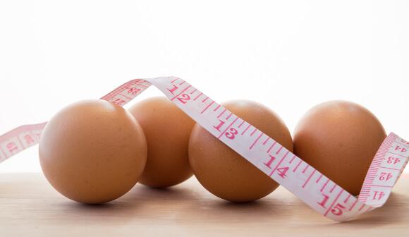 タンパク質の代謝アップ効果