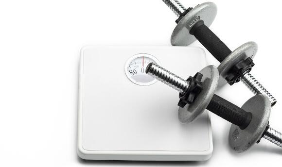 筋肉と体重