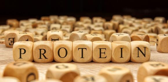 大豆タンパク質とダイエット