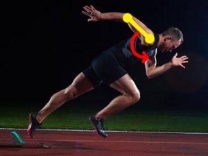 走るときの大胸筋・三角筋の働き