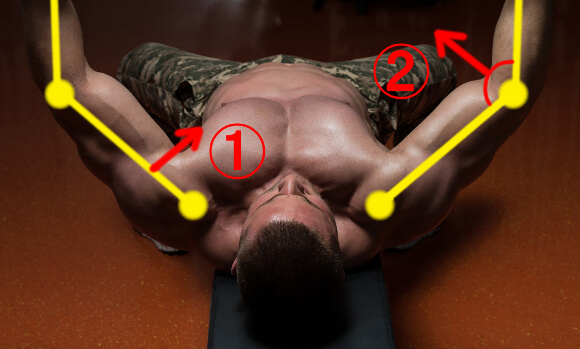 ベンチプレスでの筋肉の働き