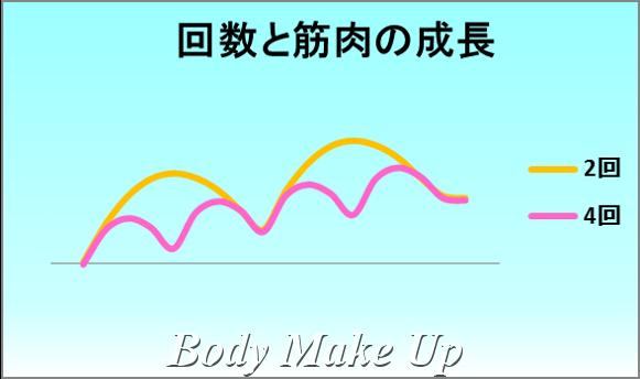 回数と筋肉の成長